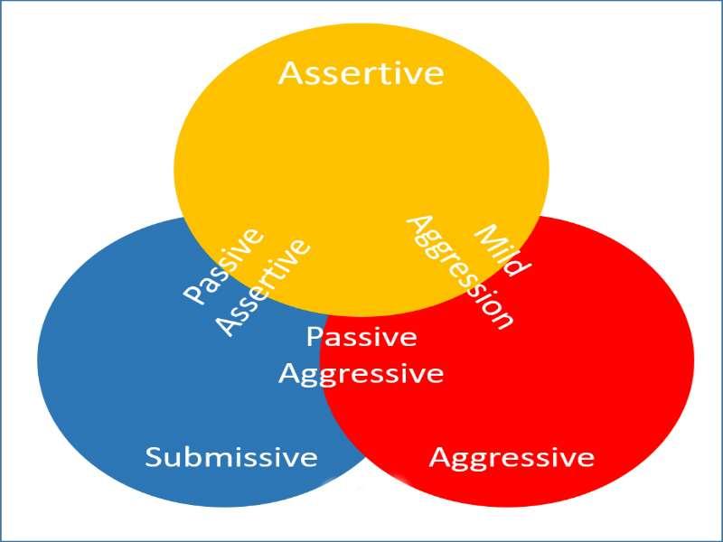 Assertive Vs Aggressive Behaviour
