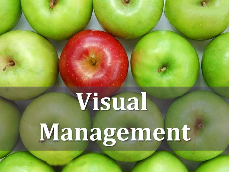 Visual Management - Streamline your Processes and Transform your Workplace