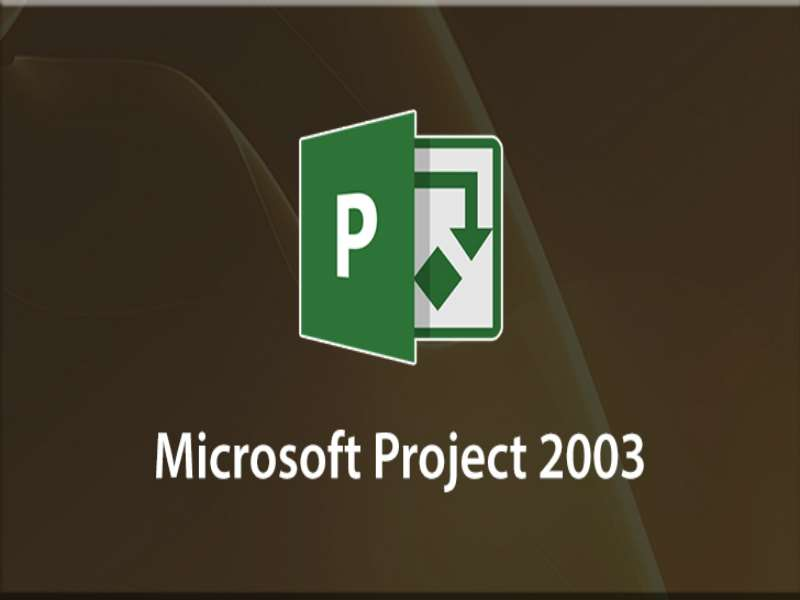 Microsoft Project 2003 Advanced