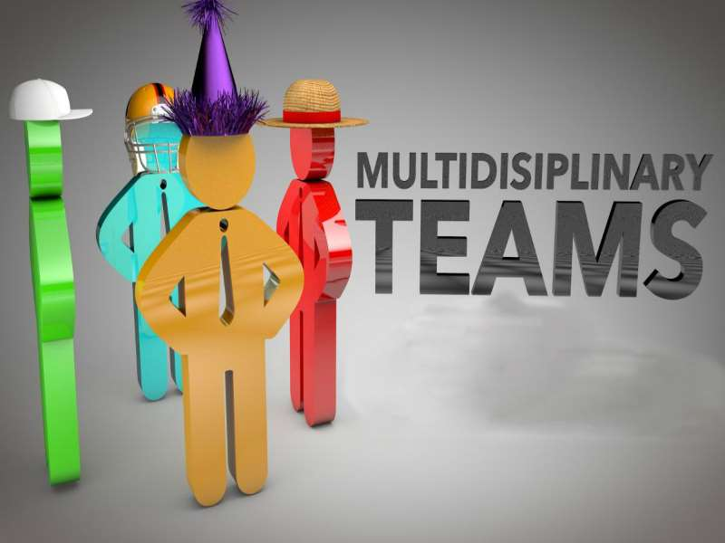 Team Building within Multi-Disciplinary Teams